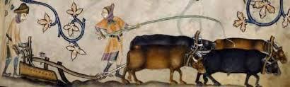aratro medioevo scrittura claudio aita